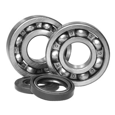 2000-2002 Magnum 325 Crankshaft Bearing and Seal Kit