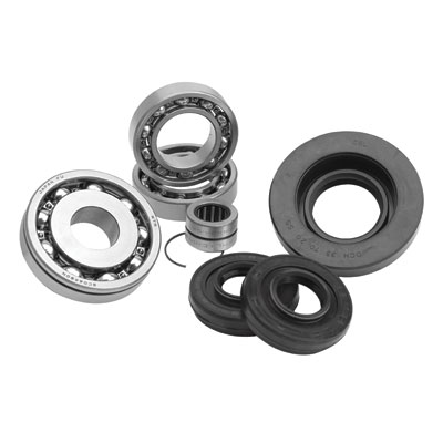 2000-2004 BIg Bear 400 2x4 Differential Kit - Rear